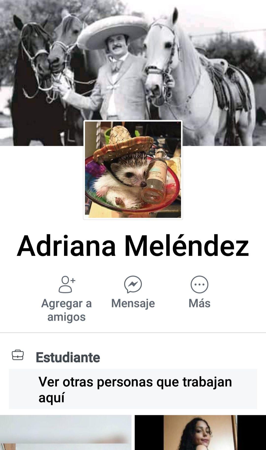 Adriana Meléndez y su minipack privado casero. 1